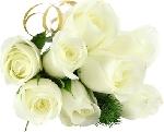 581pretty_flowers2.jpg